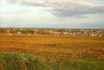 ブルゴーニュワインの特級畑を見てみよう!