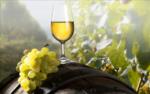 白ワインで使われるぶどうの品種をみてみよう